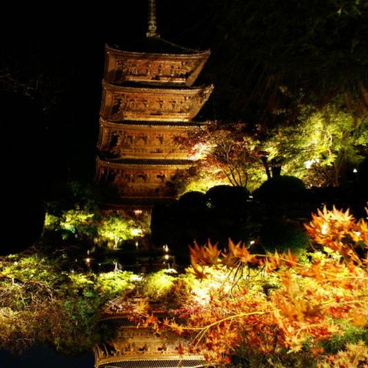 京都イベント情報 11月 秋