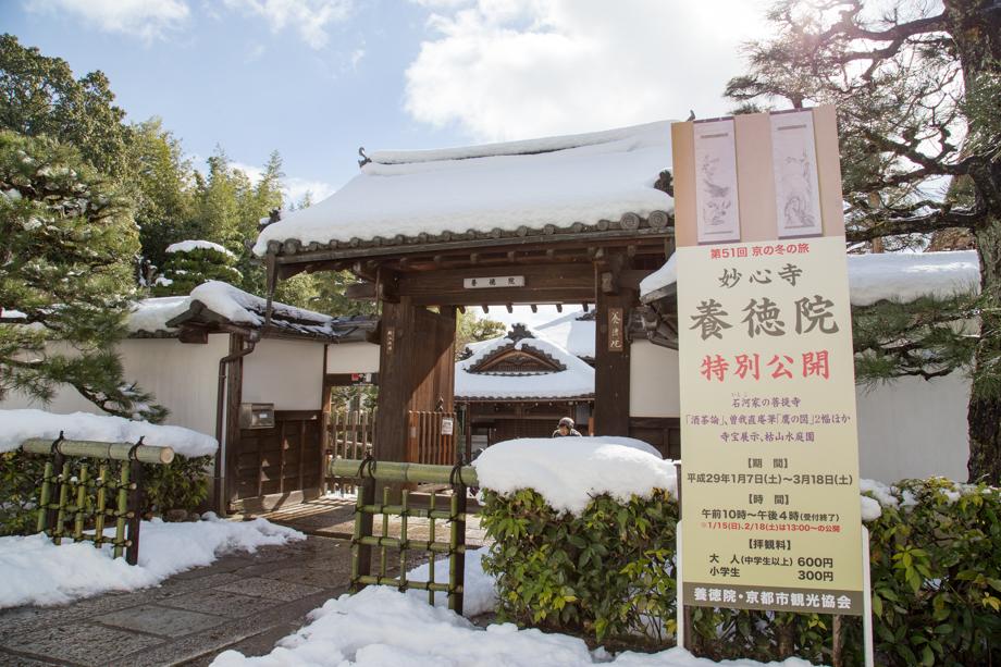 雪の妙心寺 養徳院